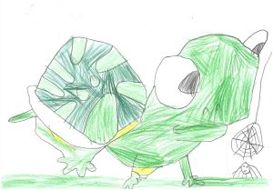 La tortue et l'araignée